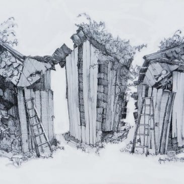 Drawing the Shed